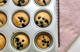 Zitrone & Blaubeer-Cupcakes